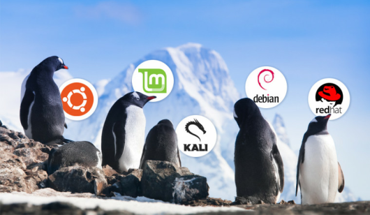 5 Best Linux VPN GUIs (2019) | Secure & easy to setup Linux VPNs
