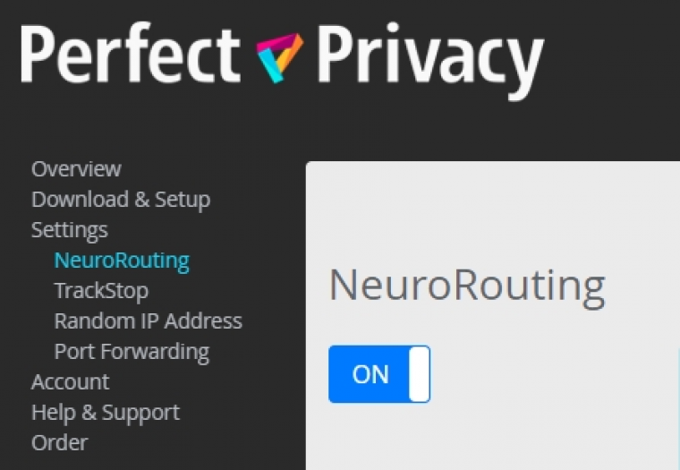 Windows client NeuroRouting settings